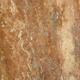 Plants: image 3 0f 4 thumb